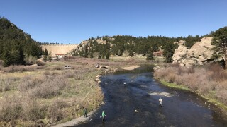 fly fishing elevenmile canyon