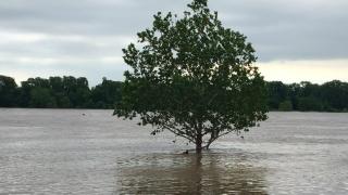 Photos: Massive flooding in Oklahoma