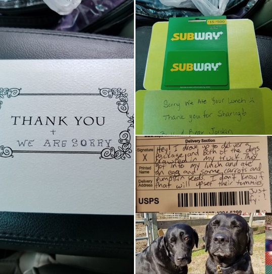 Photos: Please don't tell mom: Local postal worker leaves adorable note after dogs steallunch
