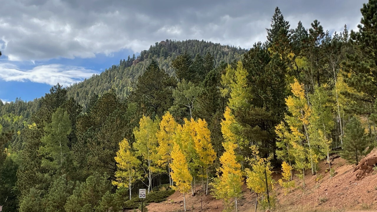 Teller County fall colors