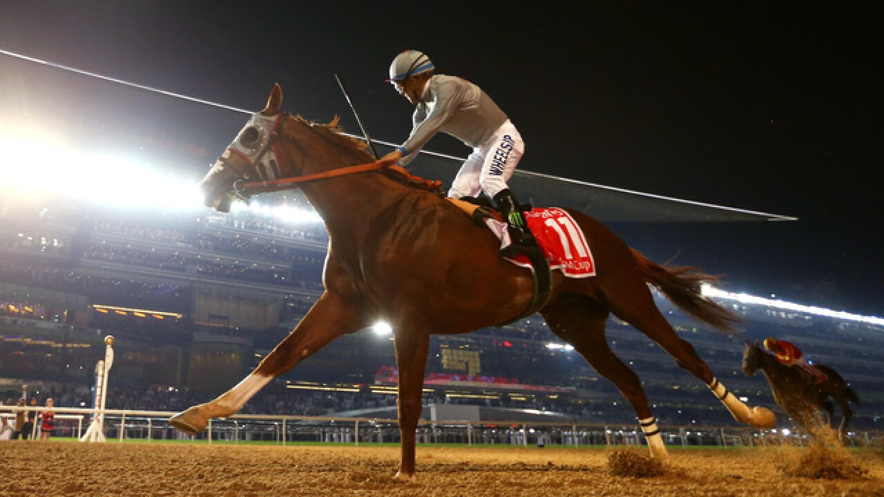 Del Mar jockey recovering after fall