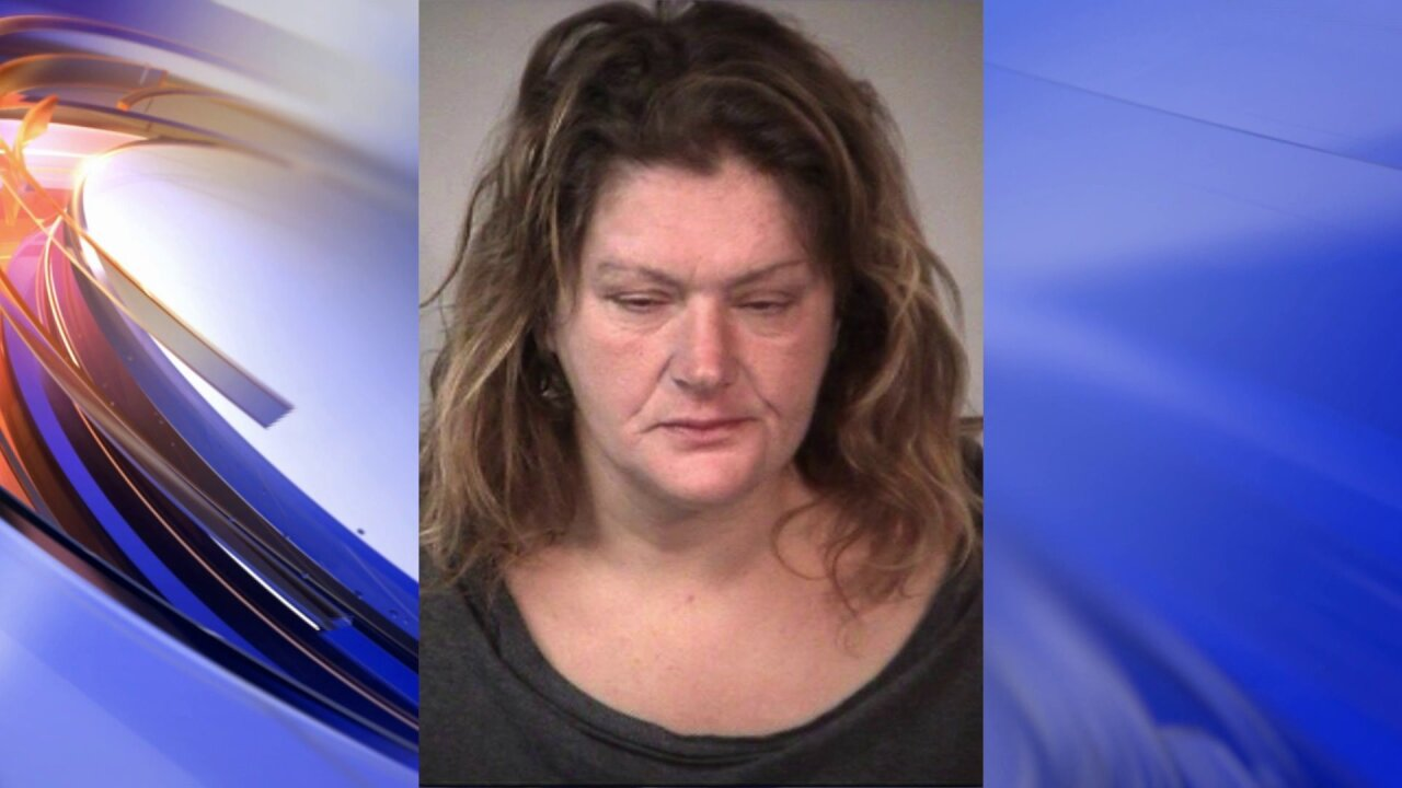 Drunk woman with cats in suitcase arrested twice in twodays