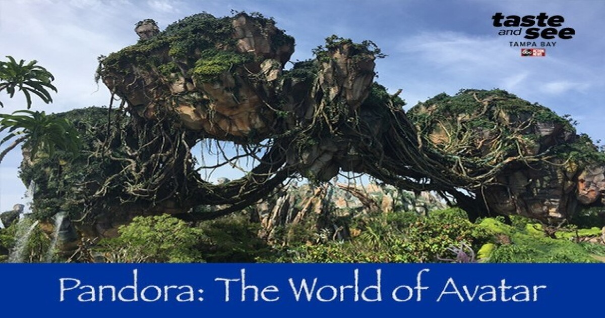 Inside look at Disney World's new 'Pandora: The World of Avatar'