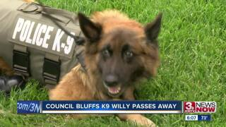 Willy the k9