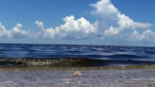Corps will maintain flows from Lake Okeechobee