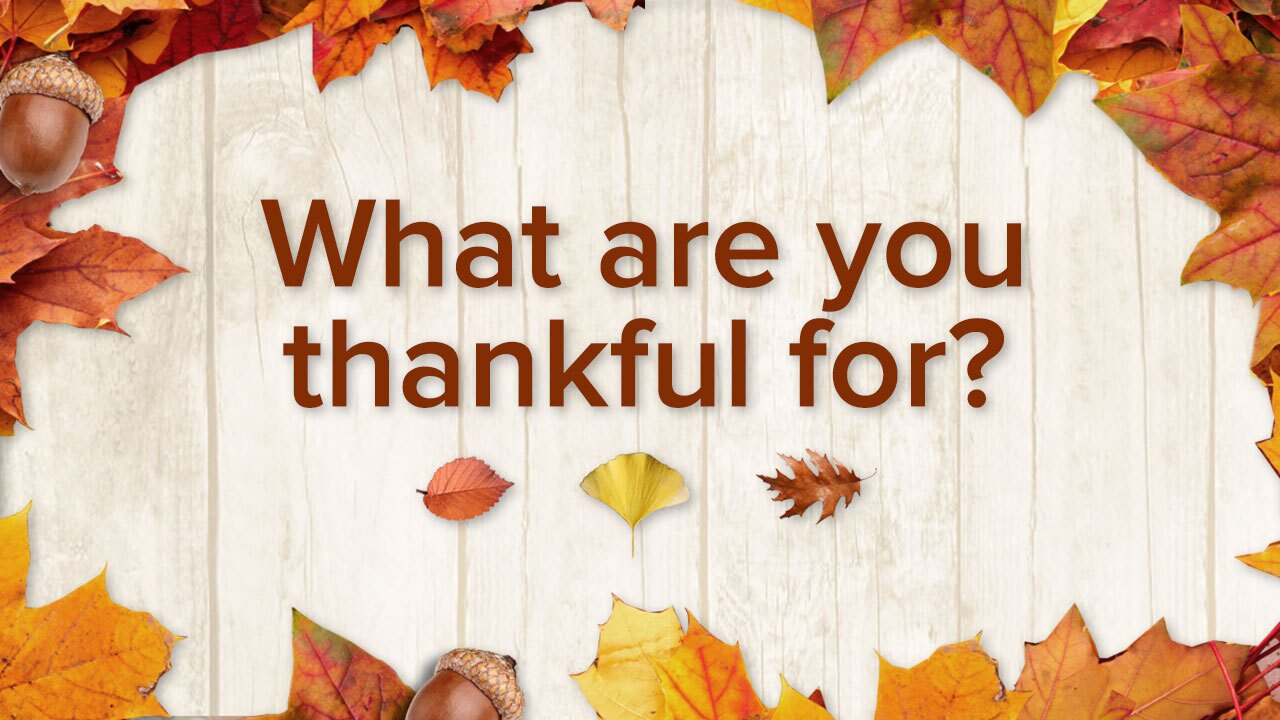 Were Thankful… For YOU   Family Policy Alliance
