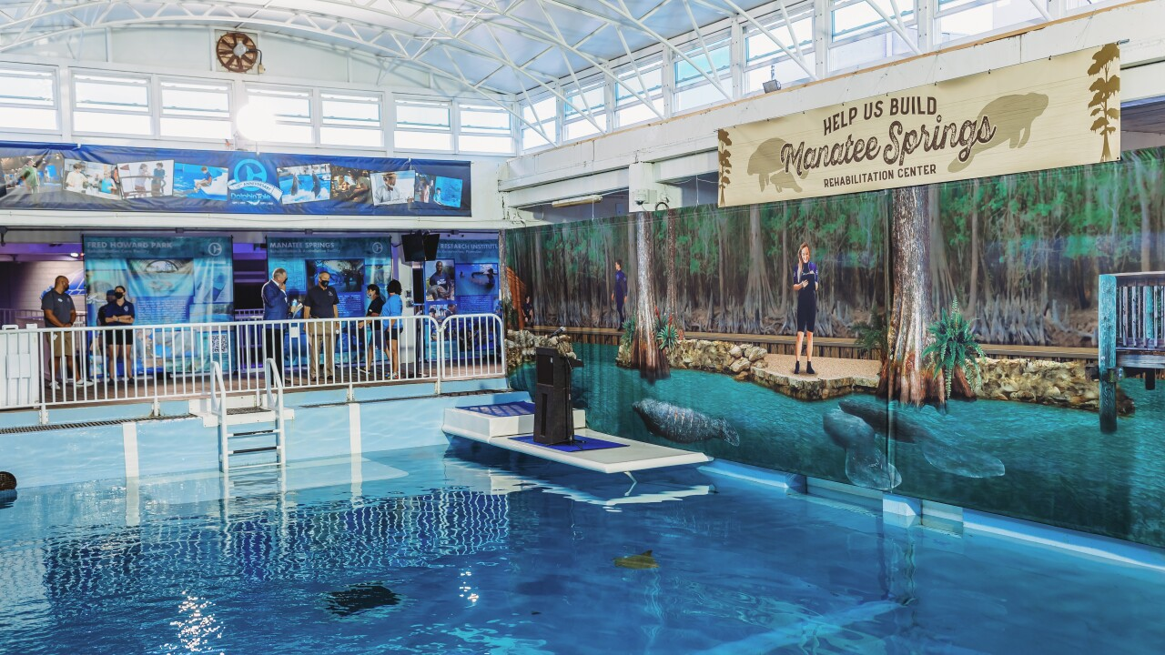 Site for new manatee rehab center at CMA.jpg