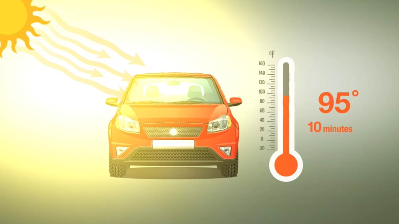 Car heatstroke deaths more common than you think