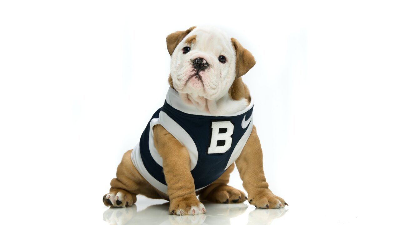 Butler Universitys Newest Mascot Butler Blue Iv Is