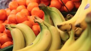 Ideas for healthy road trip snacks