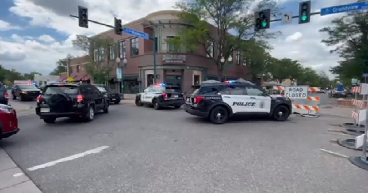 Investigation into police shooting of Good Samaritan in