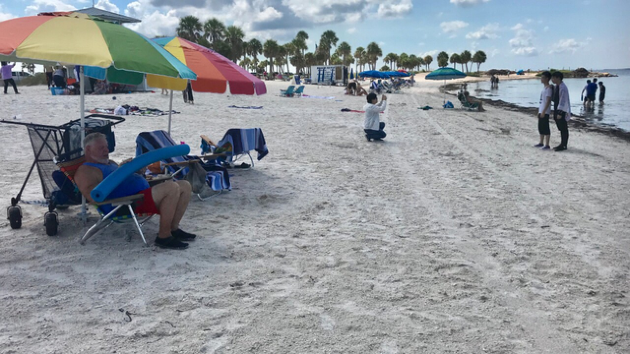 Offshore wind lessens Pinellas red tide impacts
