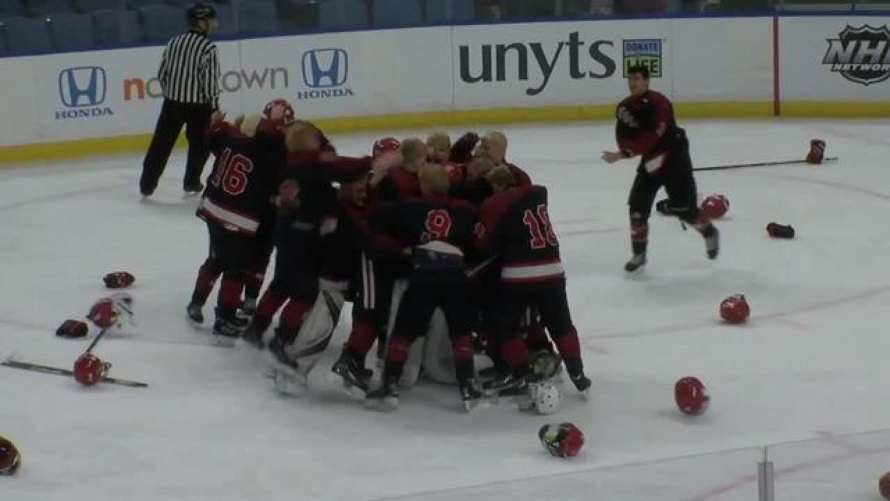 Section VI, Niagara Cup boys hockey champions...