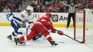 Tyler Bertuzzi Lightning Red Wings Hockey