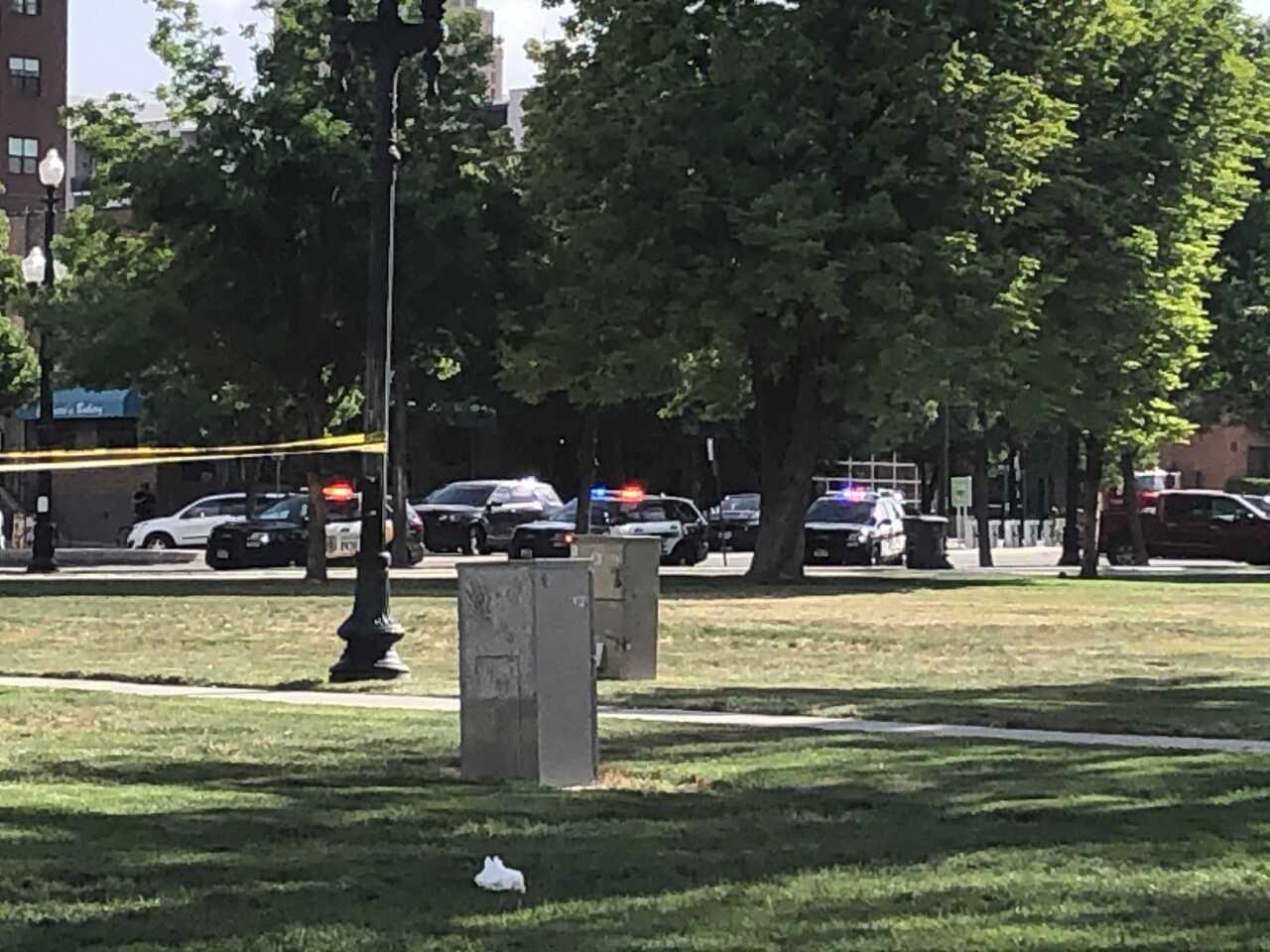 Pioneer Park Incident