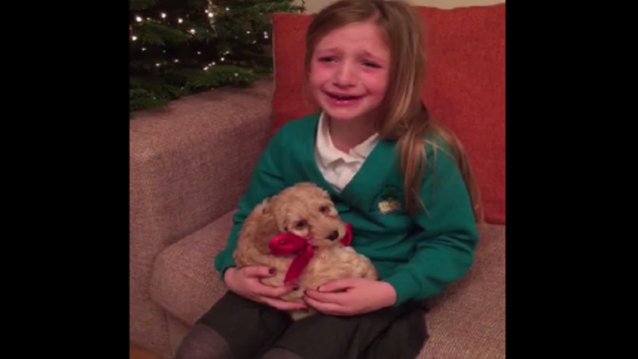 WATCH: Little girl overwhelmed by new puppy surprise