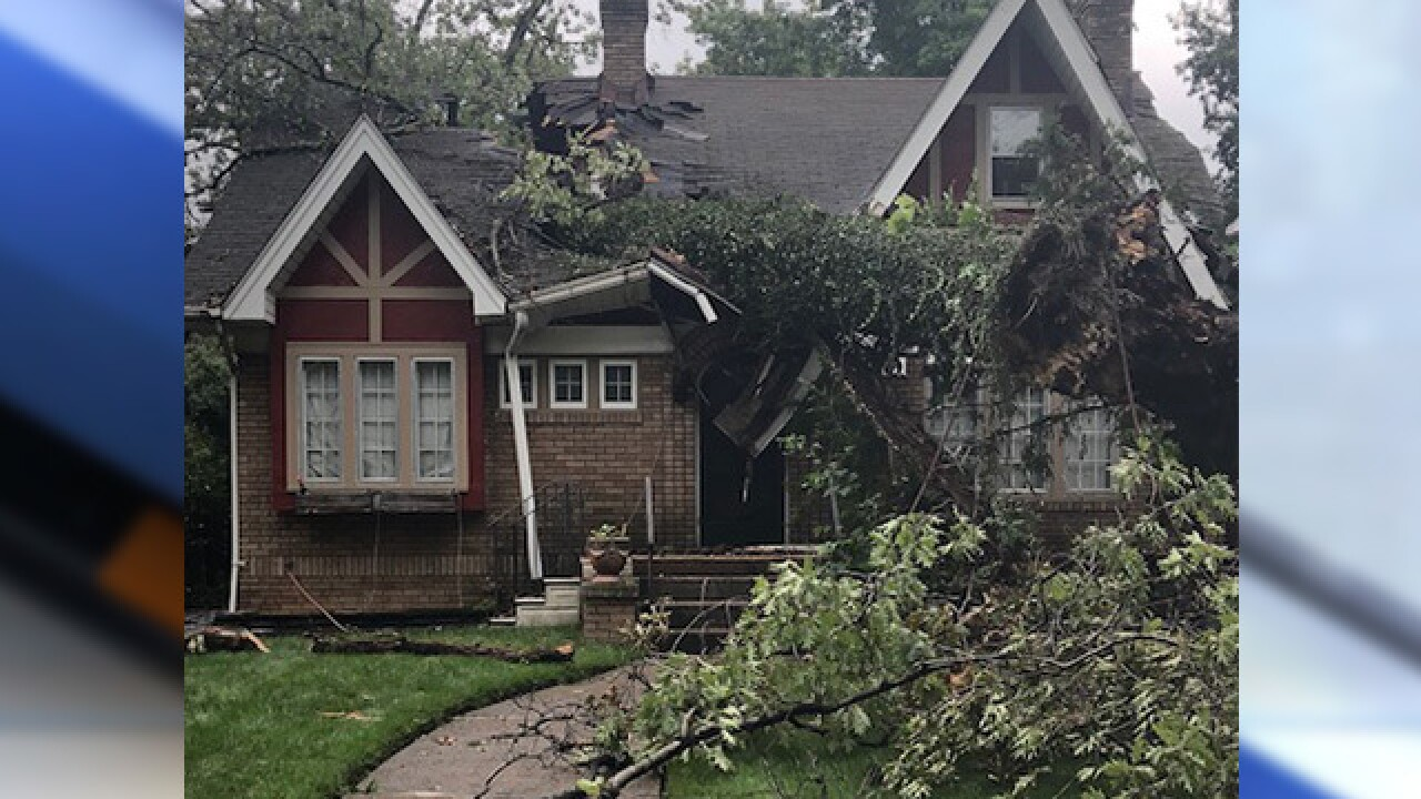 Massive tree splits house nearly in half