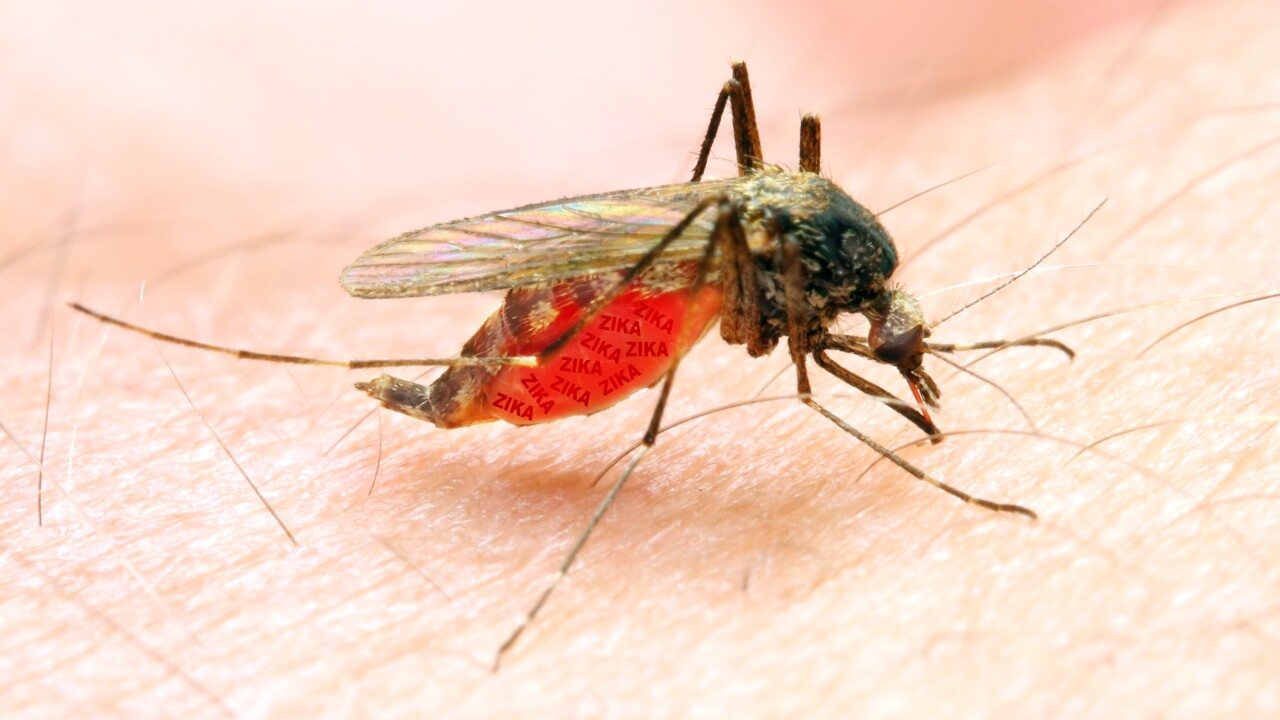 Higher heat and humidity create ideal conditions for mosquitoes