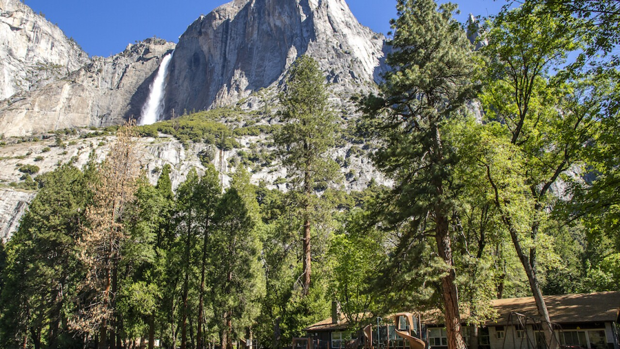 Virus Outbreak Dispatches From Yosemite
