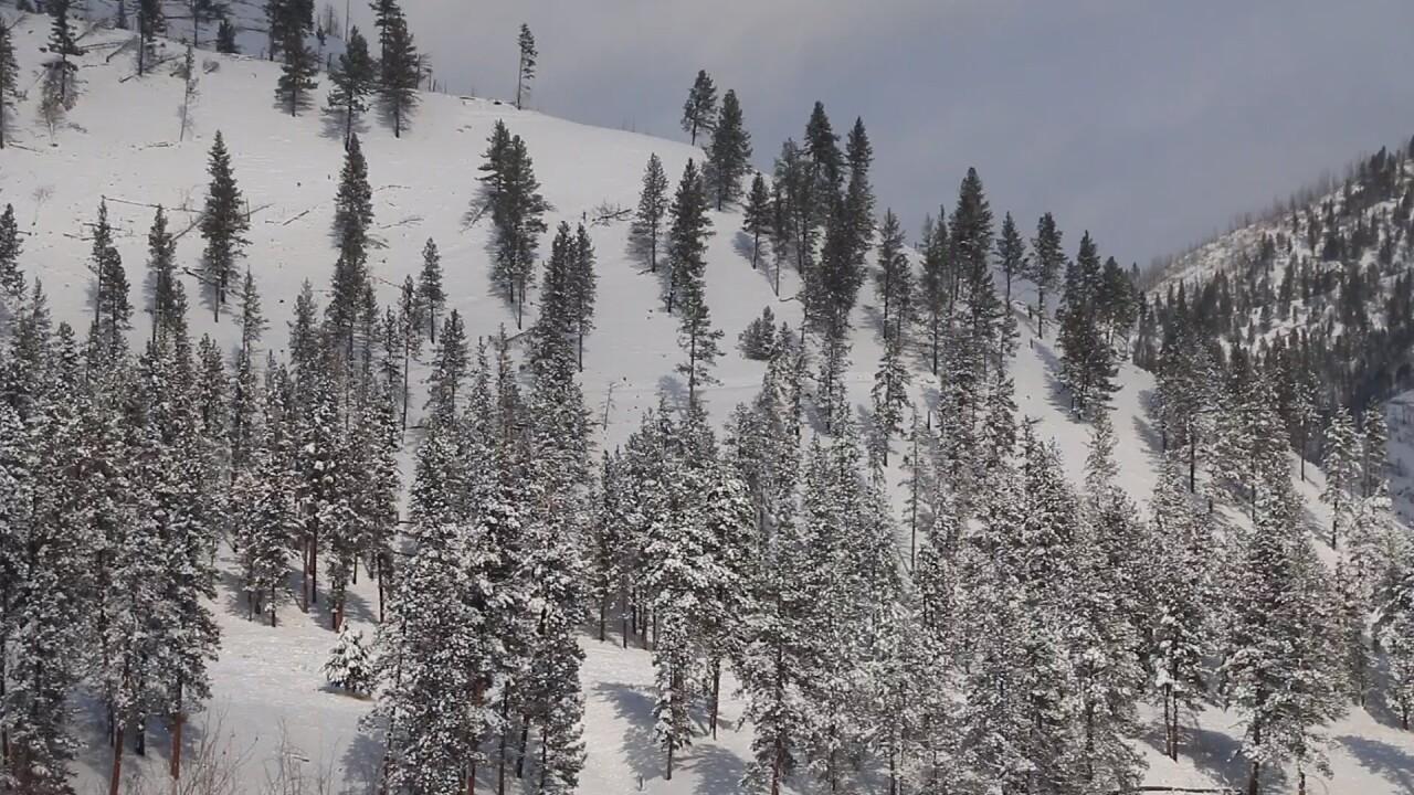 Feb Lolo snow