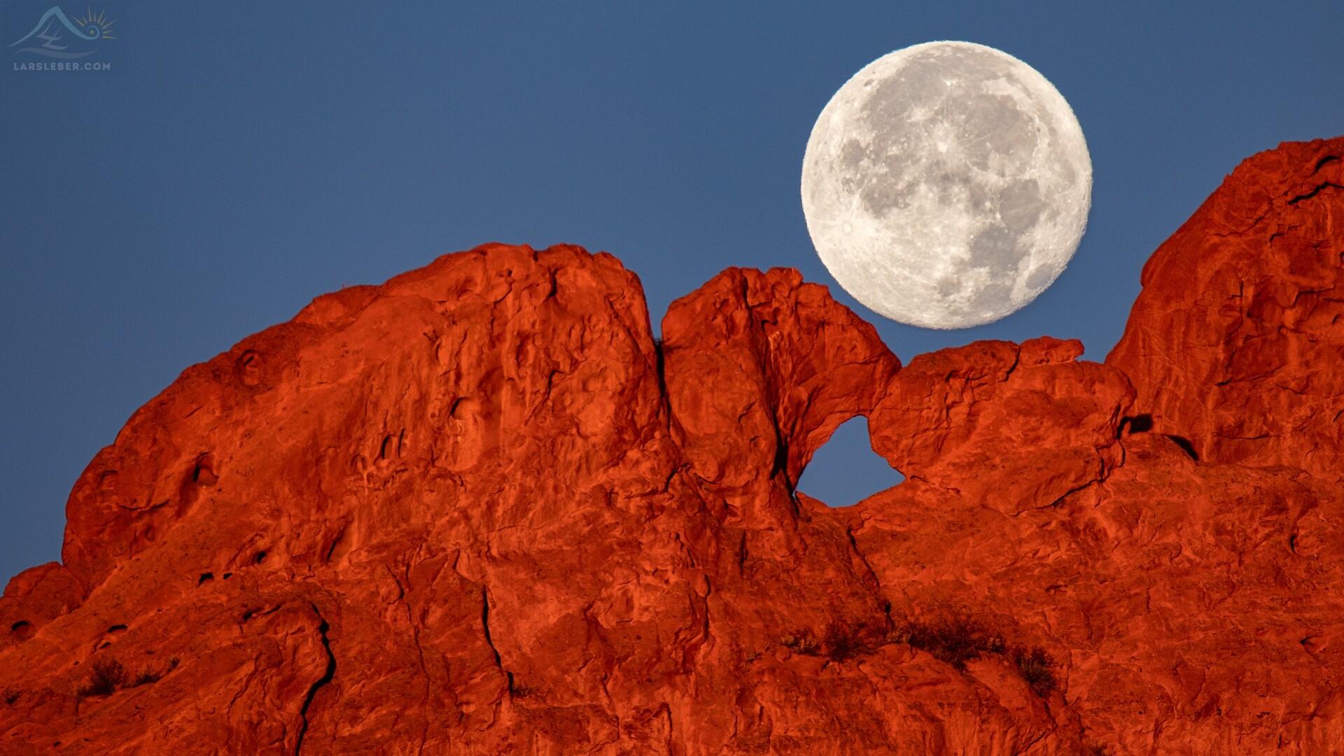 Kissing Camels Full Moon Lars Leber Photography.jpg