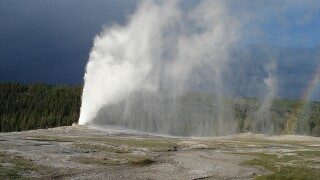 Greeley man pleads guilty to trespassing at Old Faithful