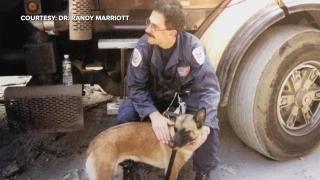 Dr Marriott at Ground Zero.png