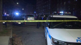 Staten Island woman dies after being shot in head by stray bullet