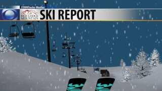 Ski Report 1-31-19