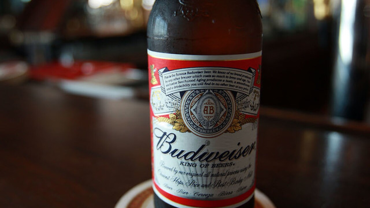 Budweiser is accidentally political in Super Bowl ad
