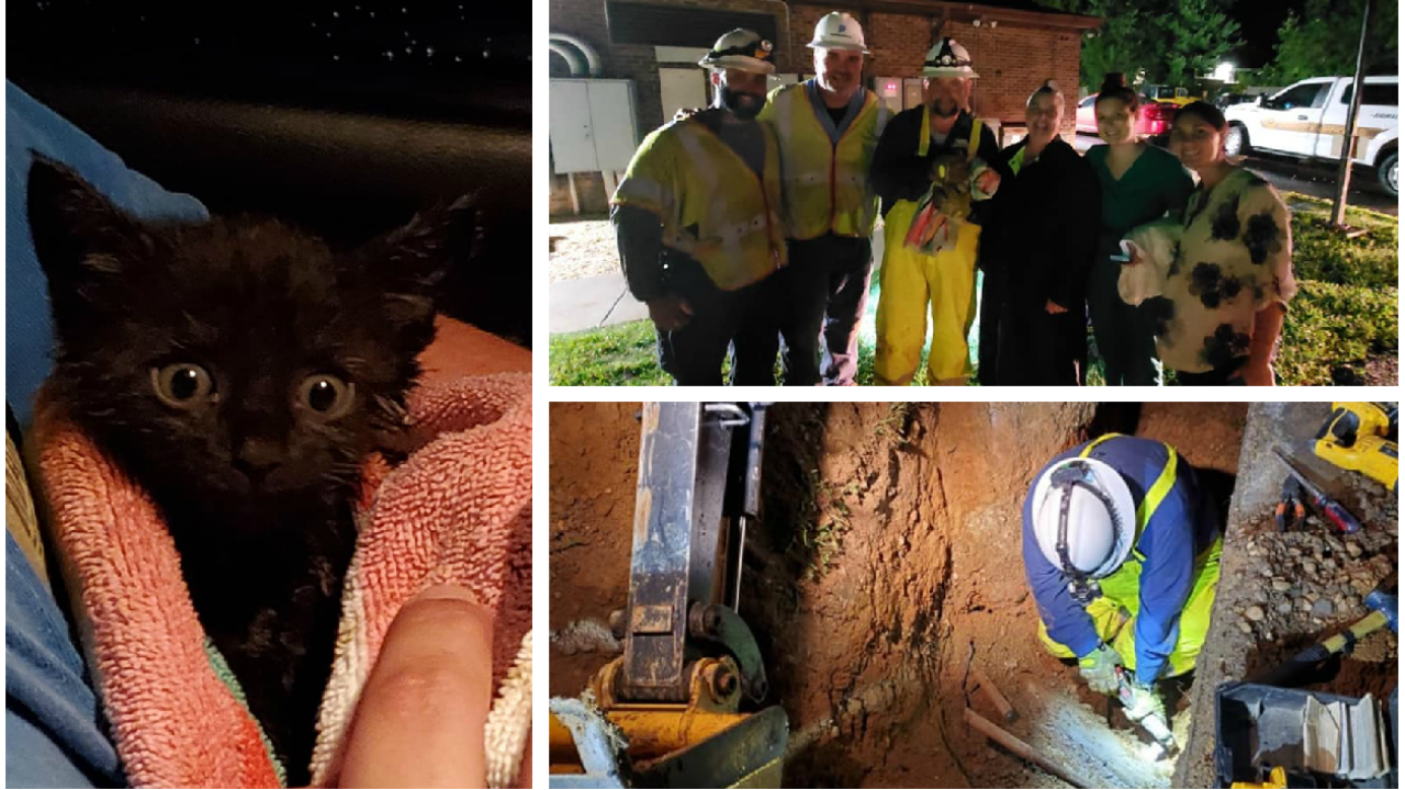Kitten freed from underground pipe after 5 hour rescue during storm
