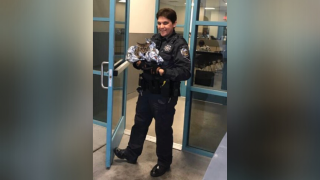 Troopers rescue cat from busy Las Vegas interstate during rush hour