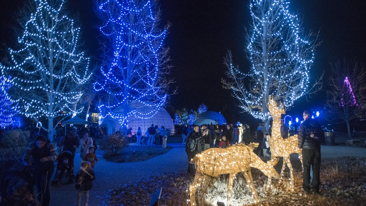 loveland winter wonderlights.jpg
