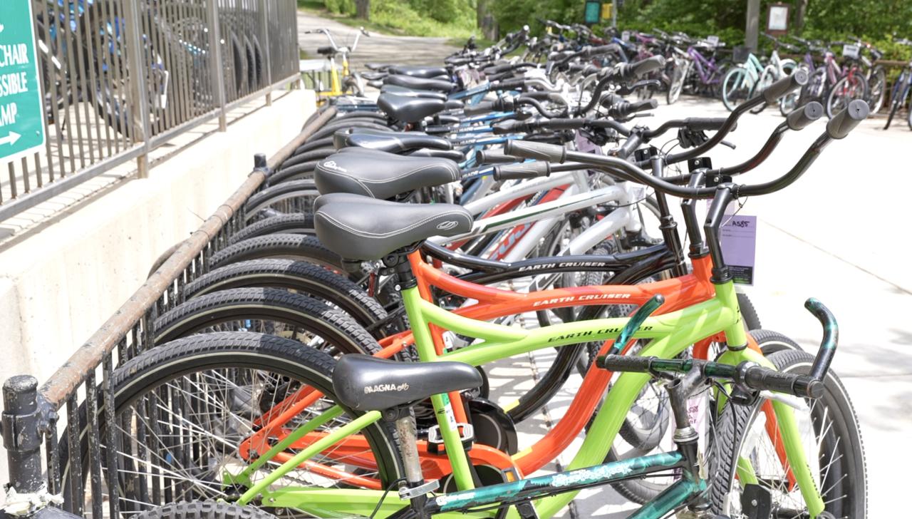 Bike lined up at MSU Bike Service Center