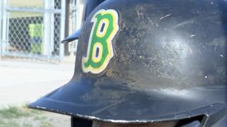 Bishop Badgers Baseball