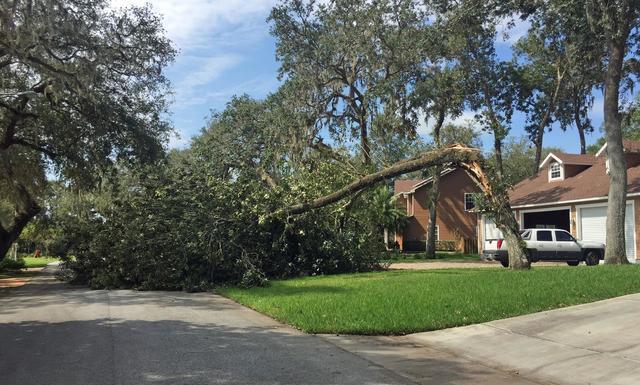 Photos: Irma damage scenes in Hernando, Citrus counties