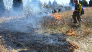 Smelling smoke? It may be prescribed burns throughout the Tampa Bay area