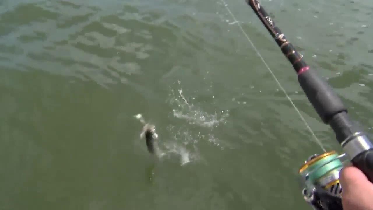 Fishing Report, Sunday, September 27