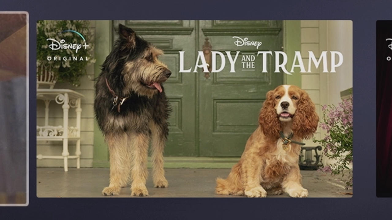 Did you catch that? Disney+ announcement includes first-look at live-action 'Lady & The Tramp'