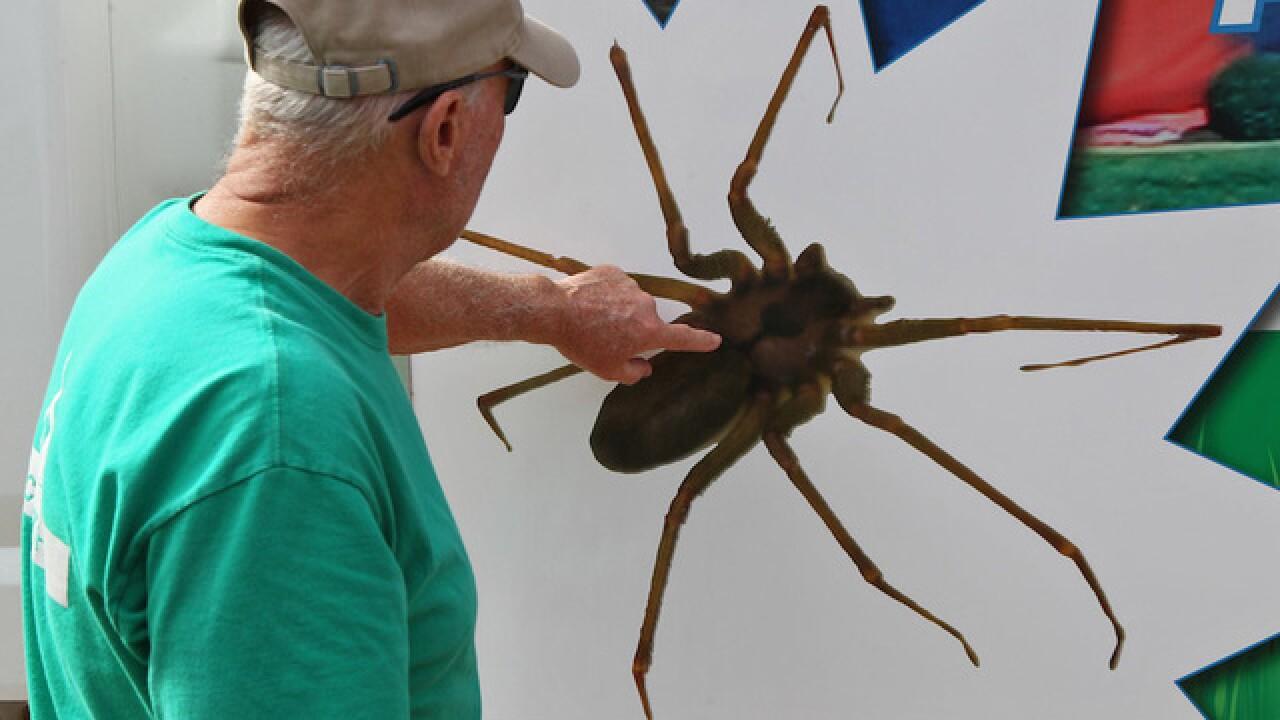 PICS: America's top 10 phobias