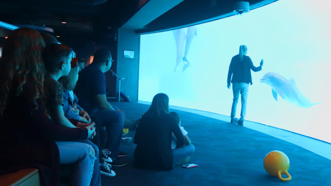 Texas State Aquarium again ranked among the top five aquariums in North America