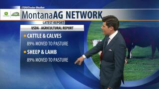 Montana Ag Network Weather: June 12th