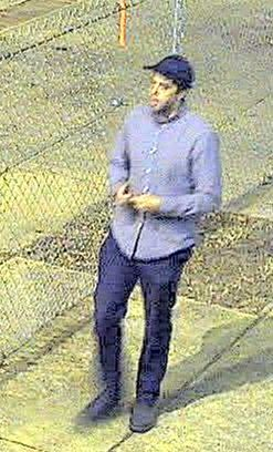 Photos: Vandals wanted for cutting down fence in Richmondpark