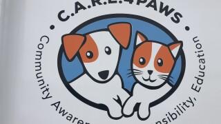 care 4 paws.jpg