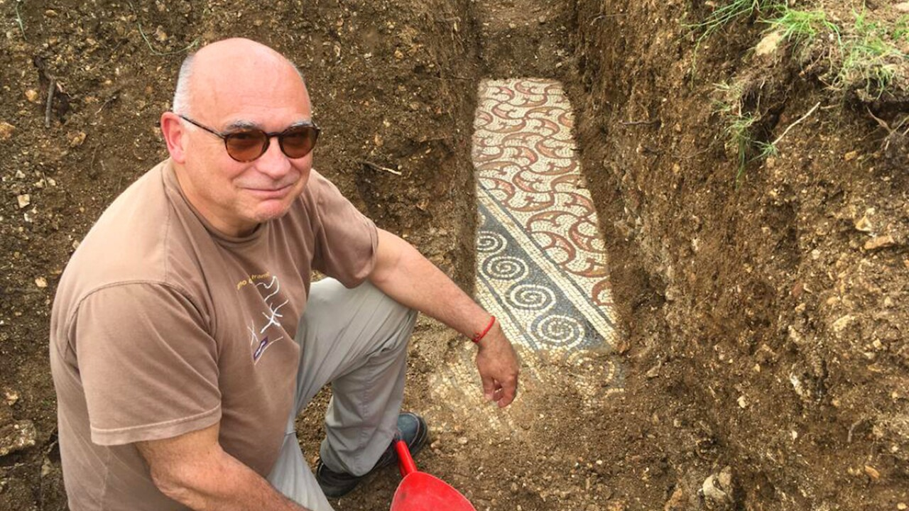 Well-preserved Roman mosaic unearthed in Italian vineyard