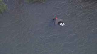 car-into-water-pasco-wesley-chapel.png
