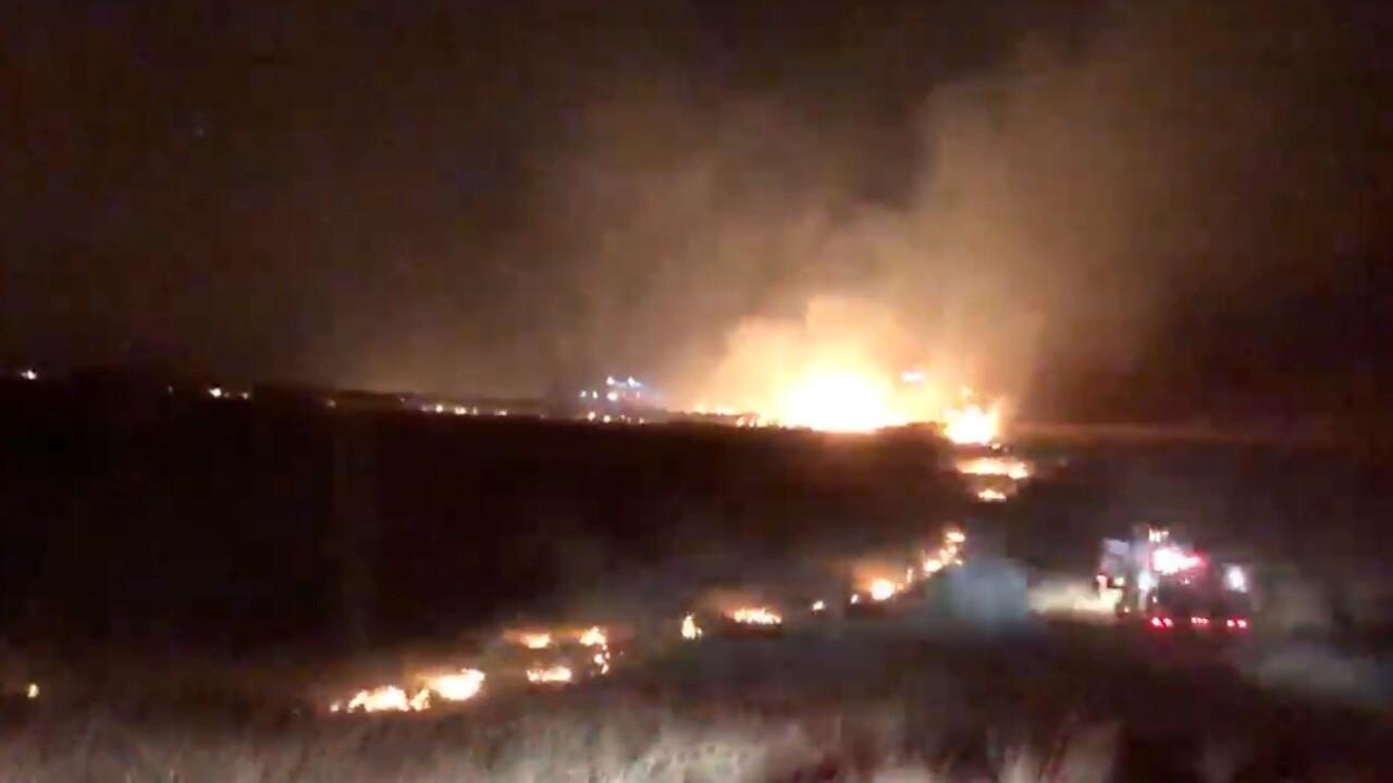 Elmo Grass Fire 106