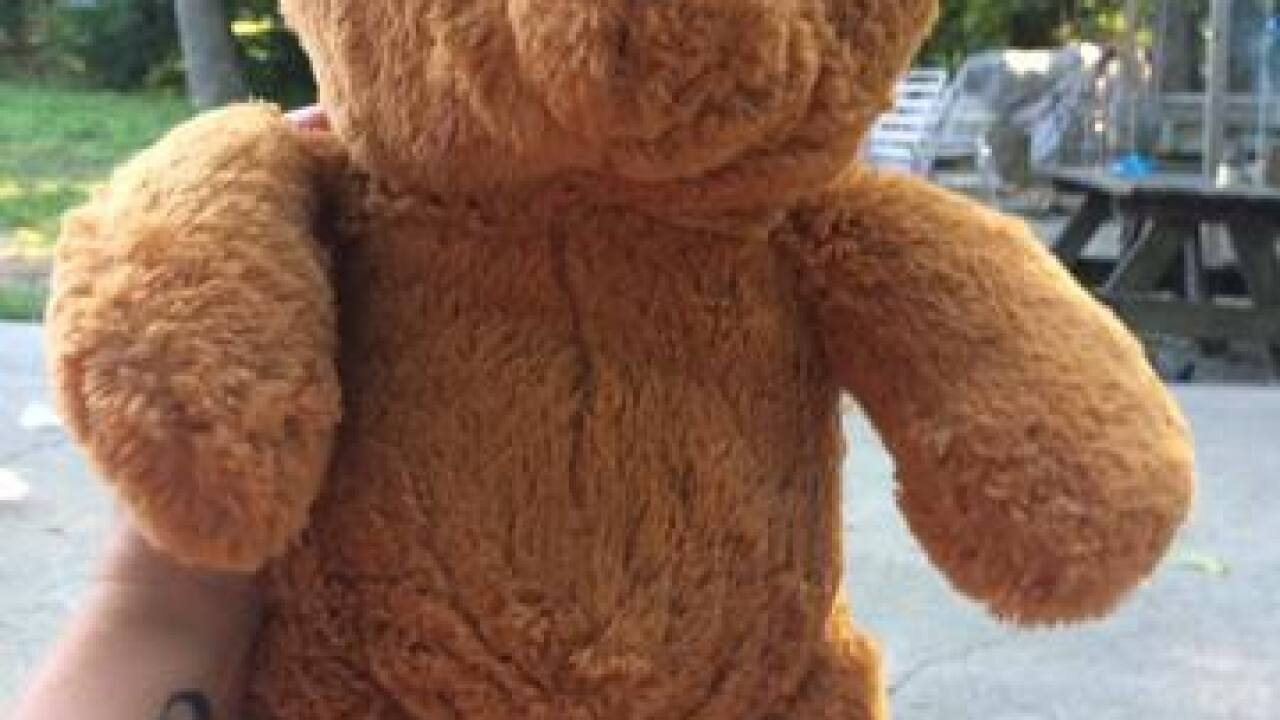 Teddy bear with message from Afghanistan found