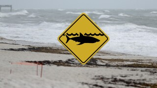 Vero Beach shark warning sign after man bitten by shark