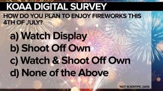SURVEY Fireworks FSG.jpg